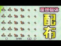 【ポケモン剣盾】理想個体!配布企画!【詳細読んでね】