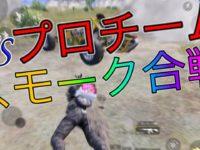 【PUBGモバイル】スモークを使用した完璧な立ち回り🔥PMJC模擬戦ドン勝【猿の極み】