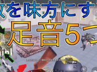 【PUBGモバイル】敵と共闘🔥カオス状態にwww 1v5 立ち回り🏆【ソロスク】