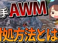 【PUBG MOBILE】最強武器AWMの対処方法をれいしーが説明!【スクワッド】