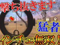 【PUBG MOBILE】SR猛者‼最強武器で無双ガチムーブがヤバすぎた!!!!【PUBGモバイル】【まがれつ】